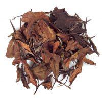 Gudao Bai (古道白茶) Ancient White Tea